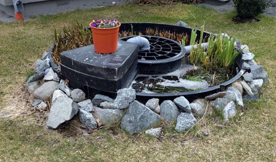 Kretslopp. En damm med vattenväxter bidrar till att rena avloppsvattnet.